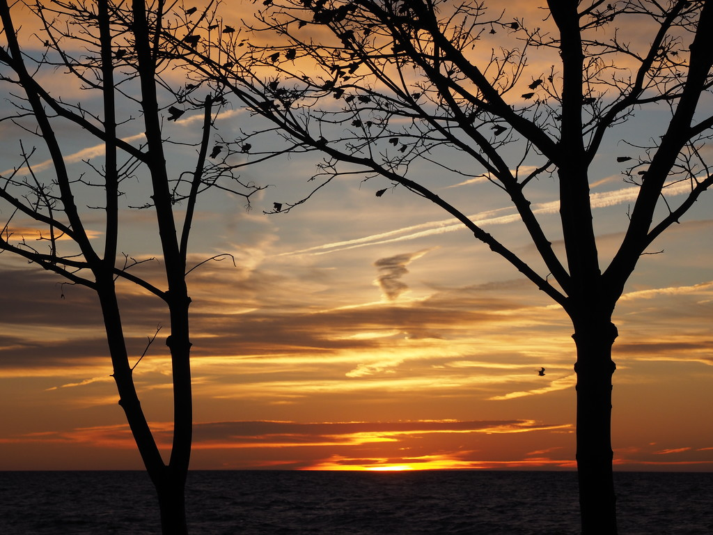 Spectacular Skies by selkie