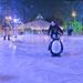 Skating Penguin.