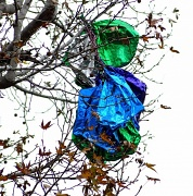 2nd Jan 2011 - Balloons