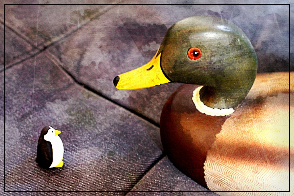 November Words- Fowl by olivetreeann