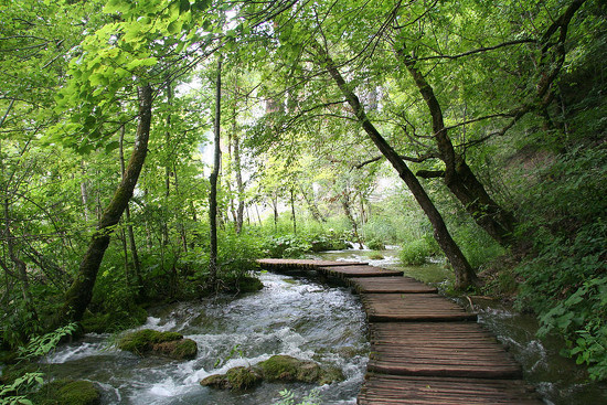 57 Plitvice Lakes National Park, Croatia by travel