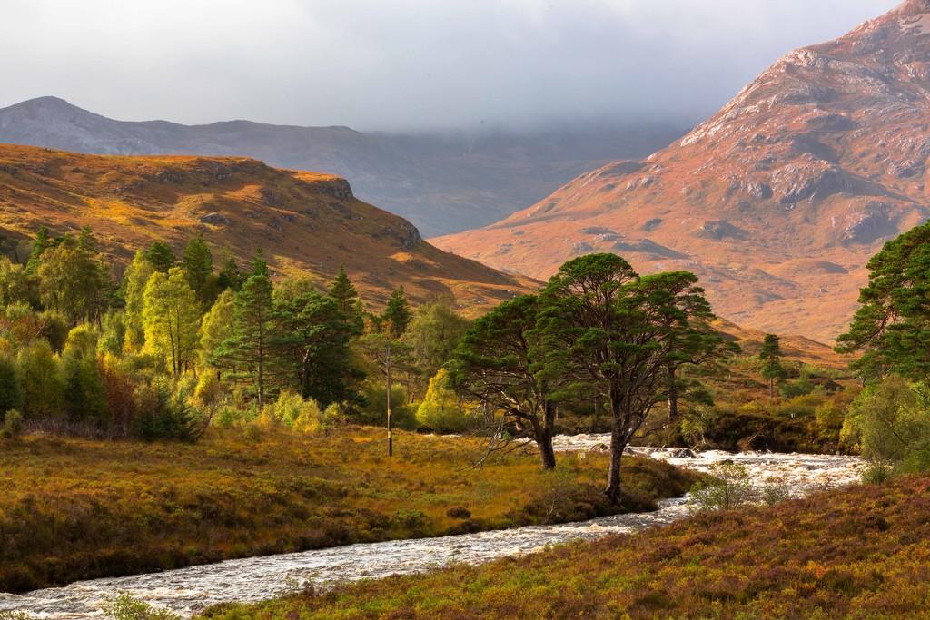Highlands by shepherdmanswife