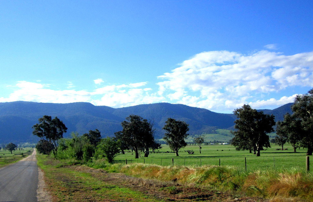 On the way up to the mountains to find the source of the River Murray by 777margo