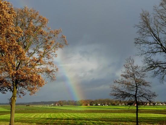 rainbow by gijsje