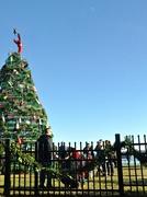 27th Nov 2017 - Lobstah trap and lobstah pot Christmas tree.