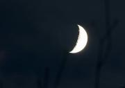 25th Nov 2017 - A moon view