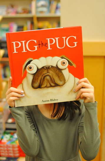 Pig the Pug by alophoto