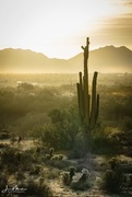20th Nov 2017 - Sun across the Desert