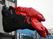 2nd Dec 2017 - Now that's a lobstah.............