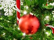 3rd Dec 2017 - Ornament