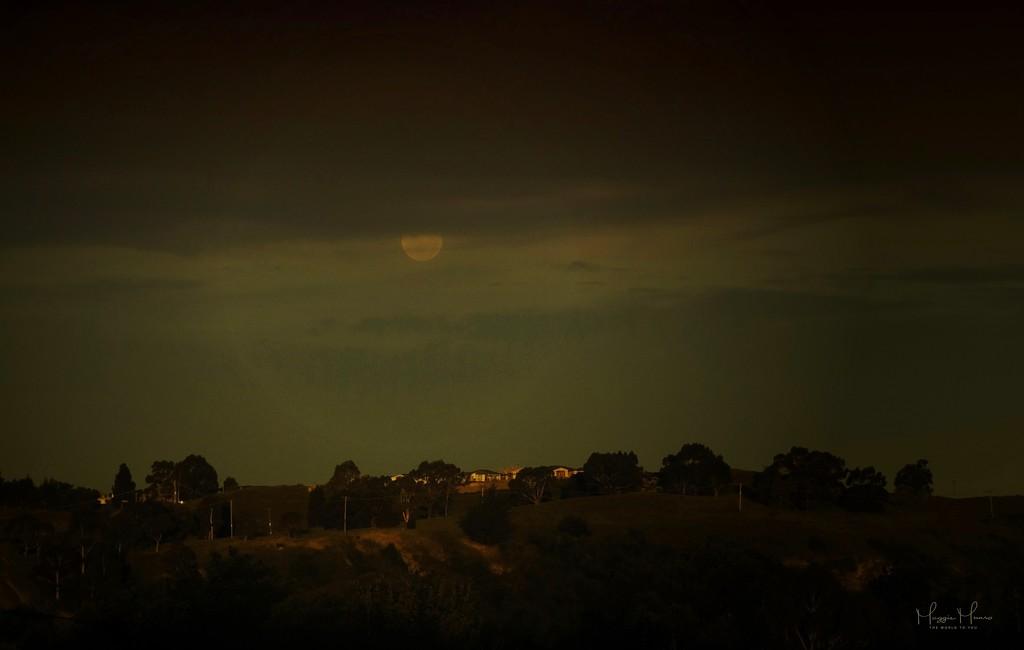 Nightsky by maggiemae