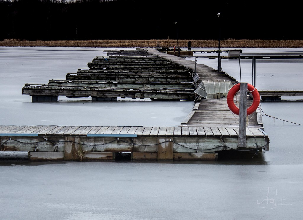 Frozen by adi314