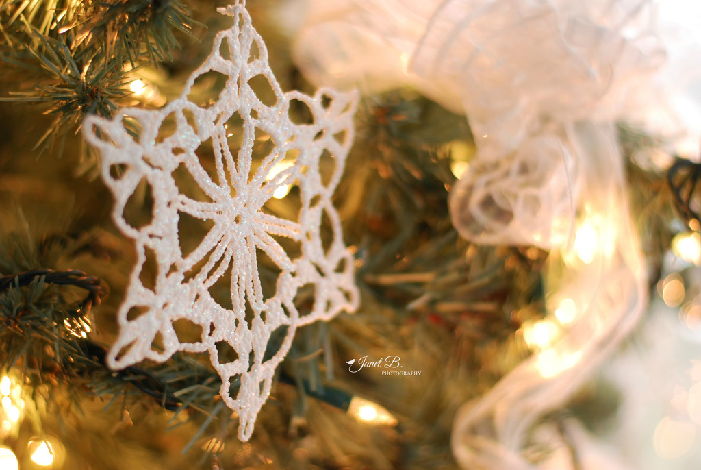 Crocheted Snowflakes by janetb