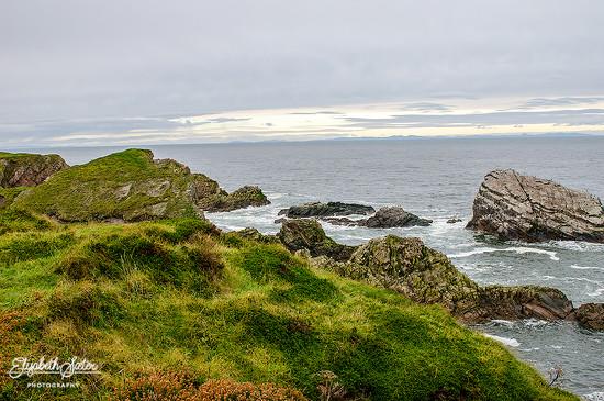 Scottish nature by elisasaeter