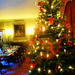 Christmas at Croft Castle... by snowy