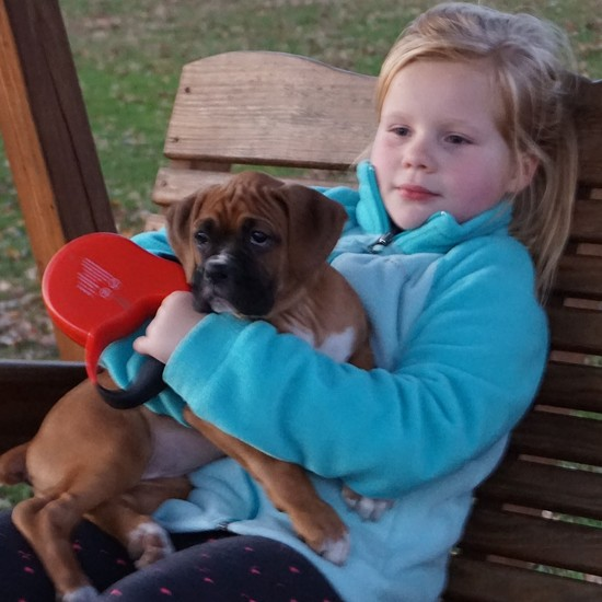 Puppy love by tunia