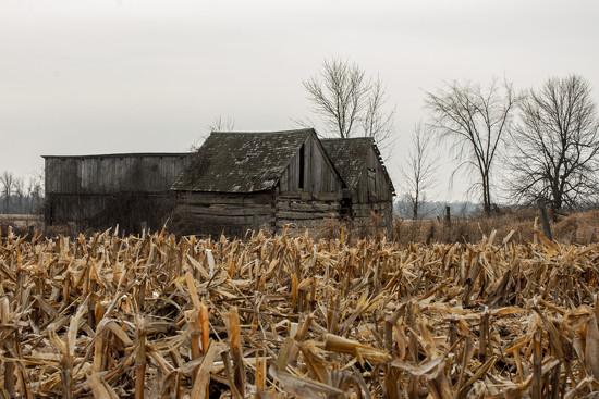 Old Barns by farmreporter