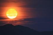 4th Dec 2017 - The Super Moon has arisen