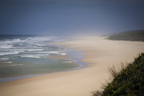 Hawks Nest by purdey