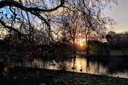 4th Dec 2017 - St James's Park morning