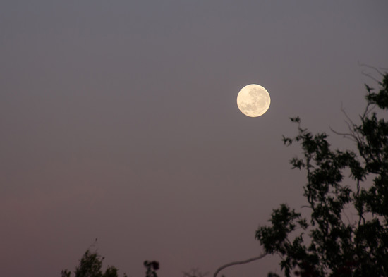 Moonset by salza