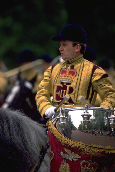 66 Drum Horse at Trooping the Colour by travel