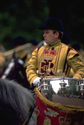 5th Dec 2019 - 66 Drum Horse at Trooping the Colour