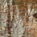 Autumn Creek Abstract