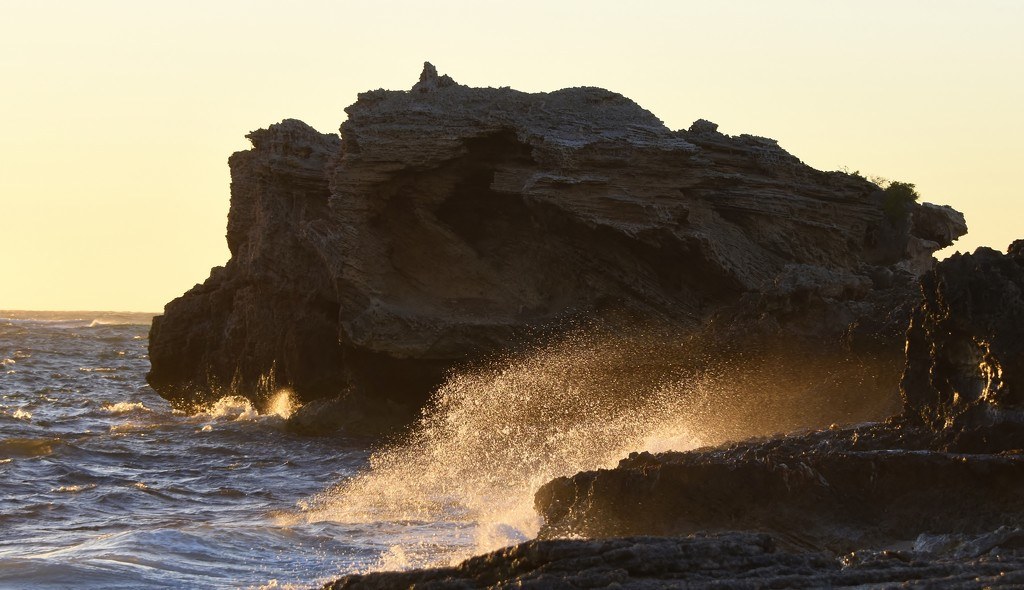 A Windy Evening At Point Peron_DSC9769 by merrelyn