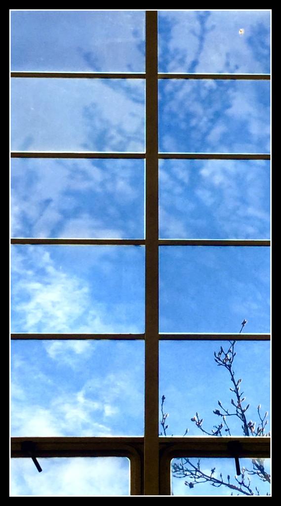 Sky through window in Eisenhower Hall stairwell by mcsiegle