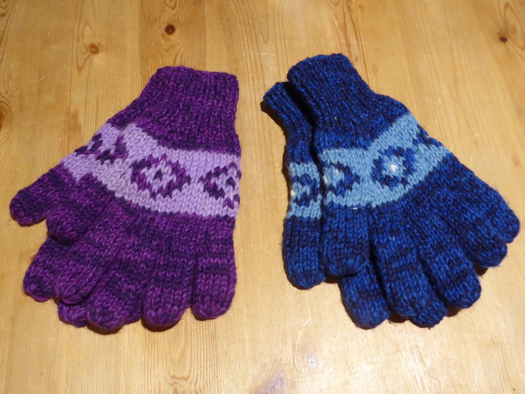 My New Gloves  by susiemc