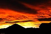 6th Dec 2017 - Sunset Silhouettes