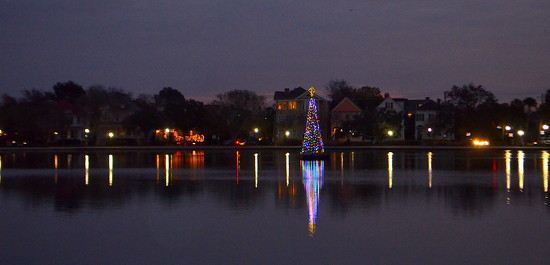 Colonial Lake Christmas tree, Charleston, SC by congaree