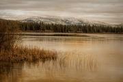 7th Dec 2017 - Thompson Lake