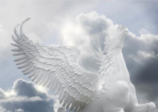 Pegasus  by joysfocus