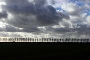 7th Dec 2017 - Dark clouds