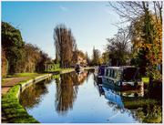 8th Dec 2017 - The Grand Union Canal,Stoke Bruerne