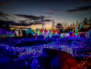 8th Dec 2017 - Welcome to Gardens Aglow