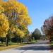 The Genteel Streets of Naperville