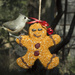 Gingerbread Man Seed Ornament by gaylewood