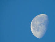8th Dec 2017 - Morning Moon