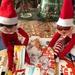 Mischievous Elf! by bizziebeeme