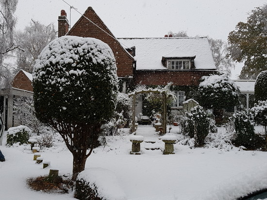 Our house this morning  by rosiekind