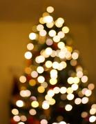 10th Dec 2017 - Bokeh Christmas tree