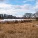 Lake Landscape Sans Grass