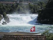 11th Mar 2019 - 70 Rhine Falls in Switzerland