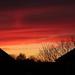 Tonight's sunset by busylady