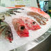 Fish (and fishmonger on a break)