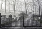 12th Dec 2017 - Fog Beyond the Gate