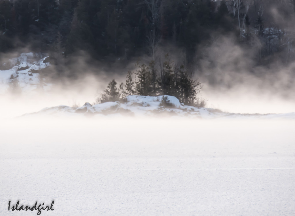 Foggy winter morning   by radiogirl